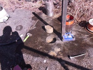 土壌調査コア
